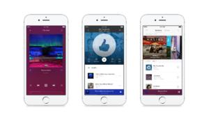 Pandora-Premium